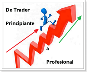 inversor profesional